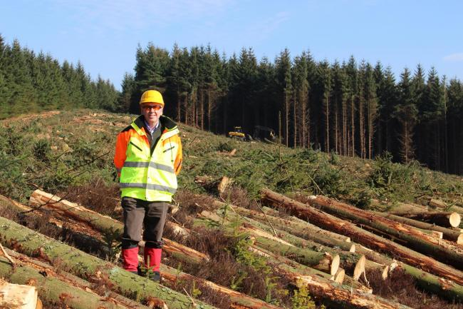 Scottish Woodlands managing director Ralland Browne at a timber harvesting site in the Borders