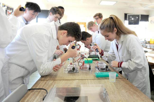 The Scottish Government's Stem strategy is underfunded, according to experts