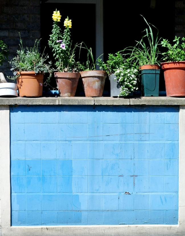 A Generic Photo of plant pots on a ledge. See PA Feature GARDENING Small Spaces. Picture credit should read: iStock/PA WARNING: This picture must only be used to accompany PA Feature GARDENING Small Spaces.