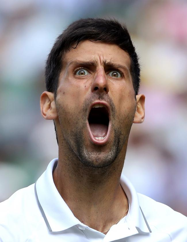 Novak Djokovic reacts during his semi-final