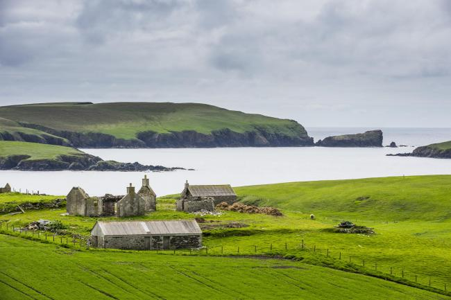 Shetland: Getty Images