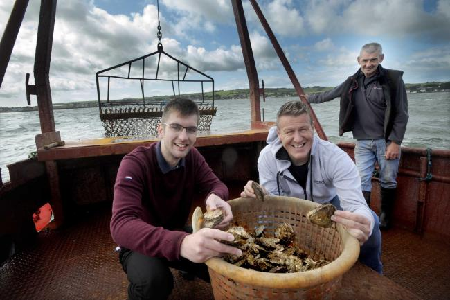 Councillor Adam Wilson (left) and Allan Jenkins, project manager for Stranraer Development Trust, gather the first oyster haul of the season.