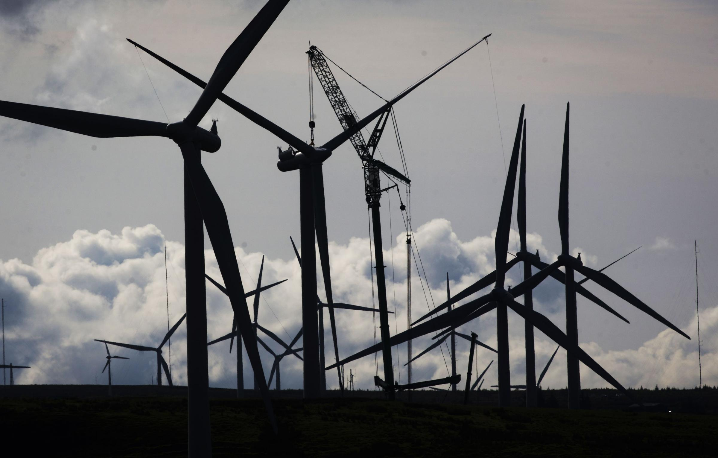 How Scots and tourists learned to love windfarms