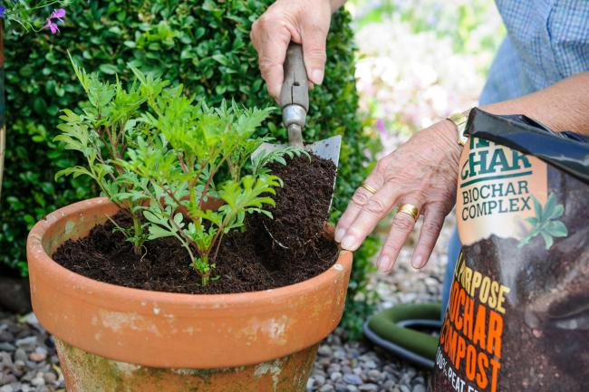 A gardener using biochar    Pic: PA