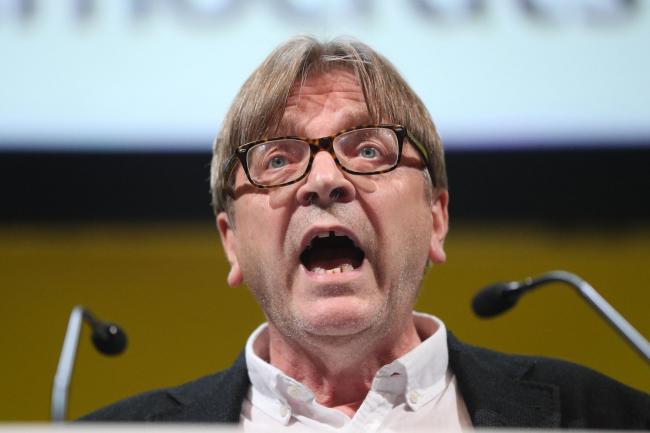 Guy Verhofstadt: Brexiteers are the real traitors