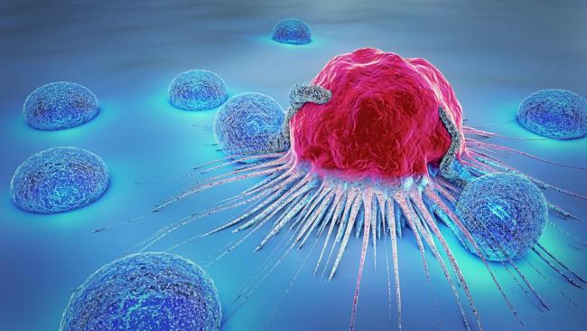 3d illustration of a cancer cell and lymphocytes.
