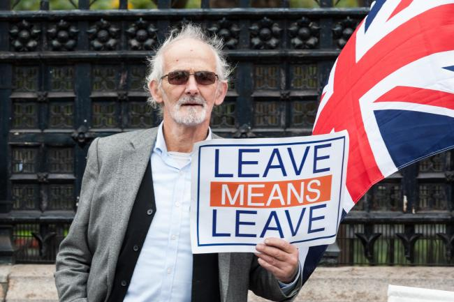 A Brexit supporter demonstrating outside the Houses of Parliament earlier this week.