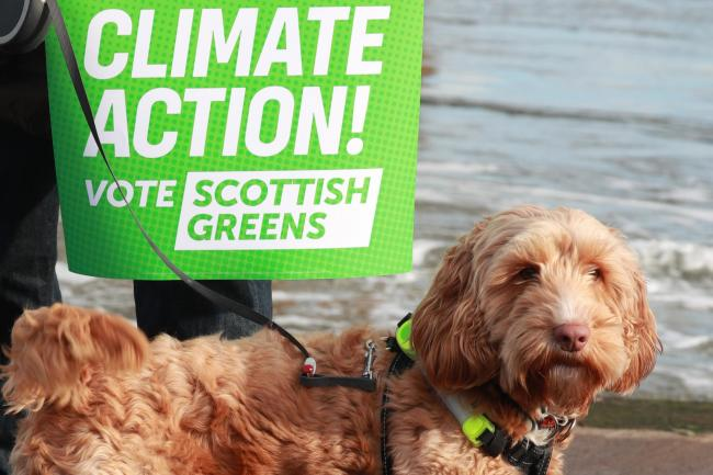 An interested bystander at the Scottish Green's election campaign launch. Should the party give up its pro-independence stance and concentrate on the climate issue?