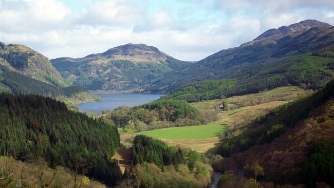 Scottish Natural Heritage apologises for killing hundreds of trees