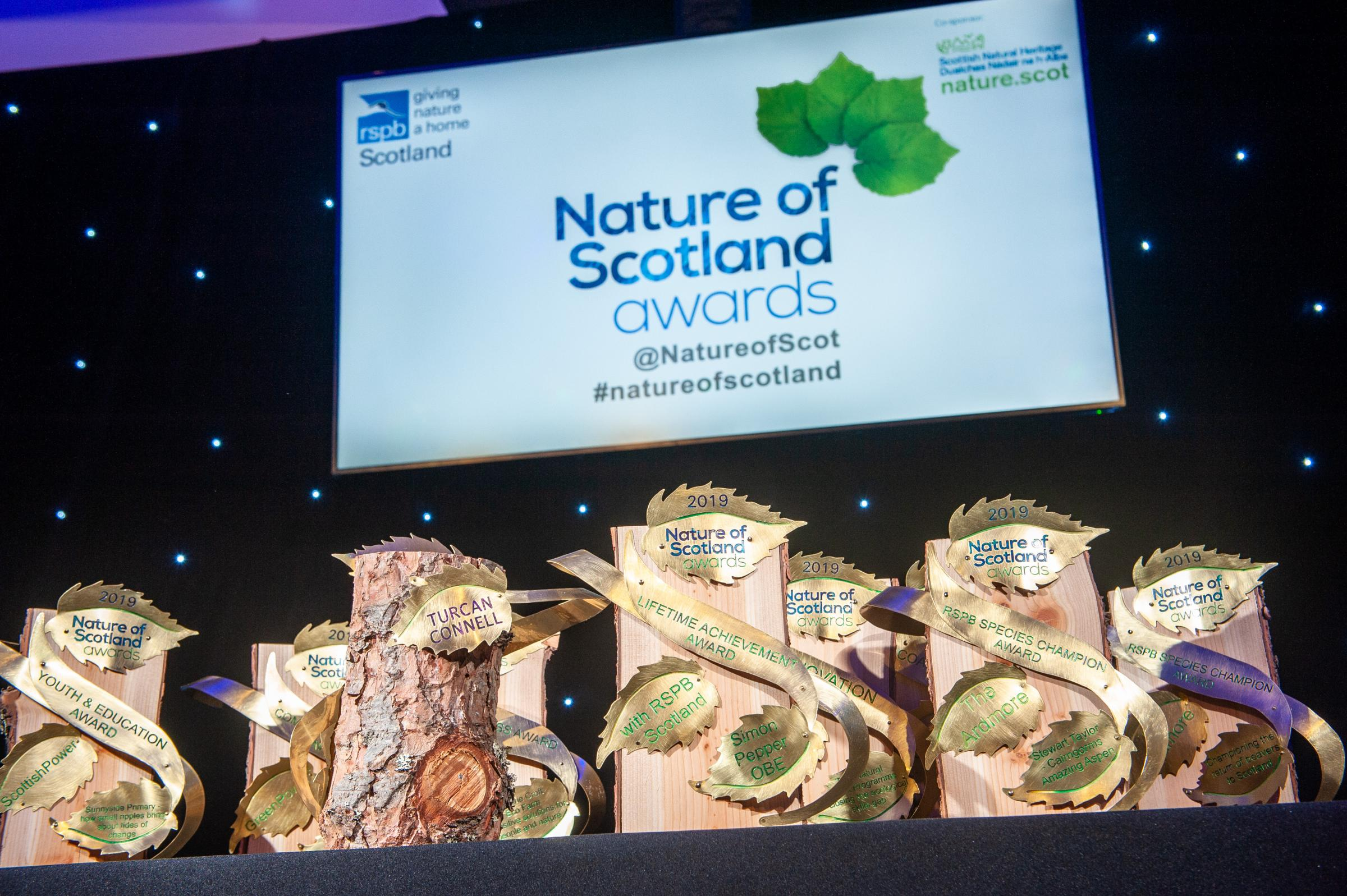 Scottish nature Awards celebrate work to save butterflies, birds and trees