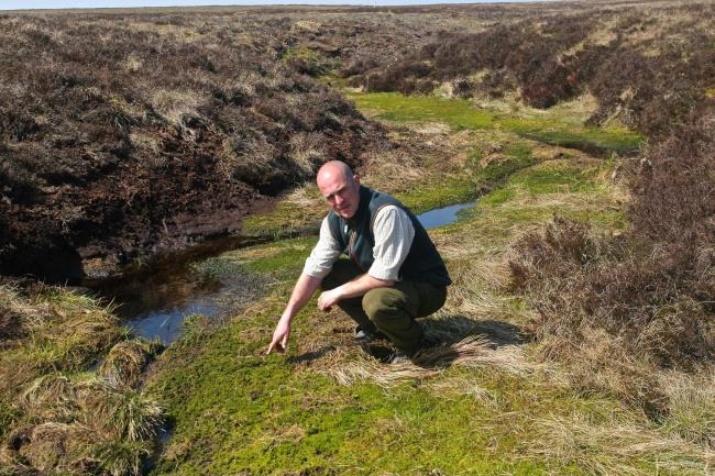 Head gamekeeper Ian Elliot examines The Hopes Estate's peatlands – a vital habitat for wildlife and for tackling climate change.