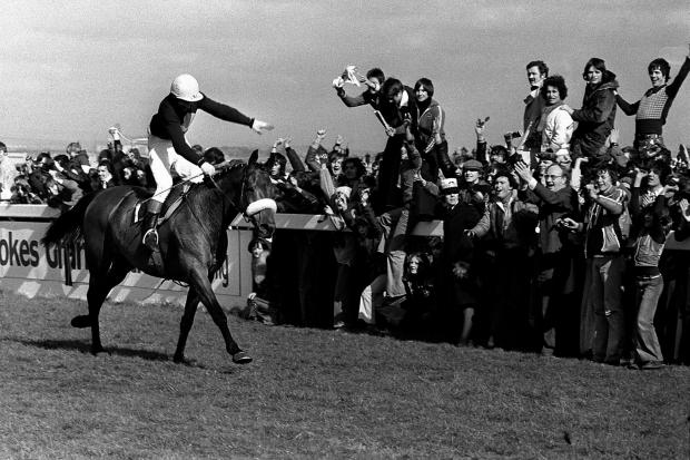 The crowd goes wild with joy as Red Rum, ridden by Tommy Stack, romps home at Aintree to make National Hunt history as winner of the Grand National Steeplechase for a record third time (PA)