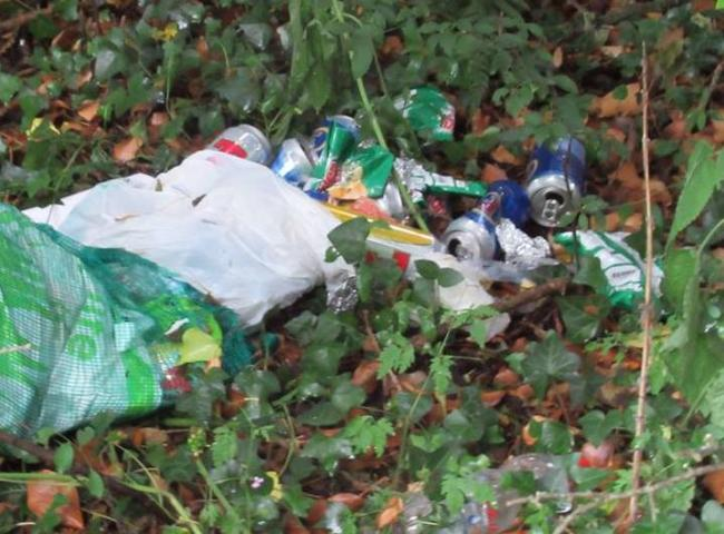 Many people are responsible for the ever-increasing litter problem
