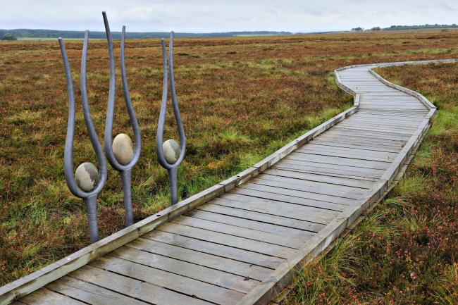 Blawhorn Moss National Nature Reserve is set to be expanded.