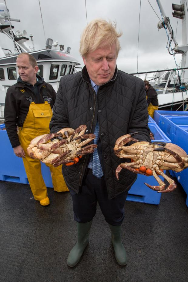 HeraldScotland: Getty images
