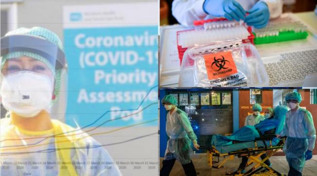 Researchers are rushing to develop a vaccine against Covid-19, as insight increases how our immune systems respond to the virus