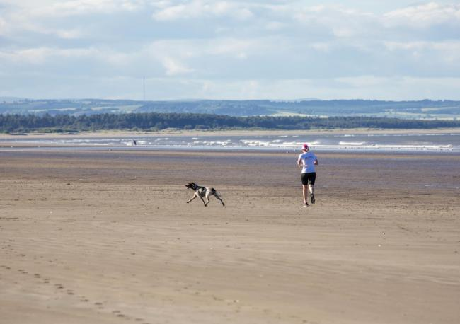 Jogger on the beach with his dog at West Sands, St Andrews.