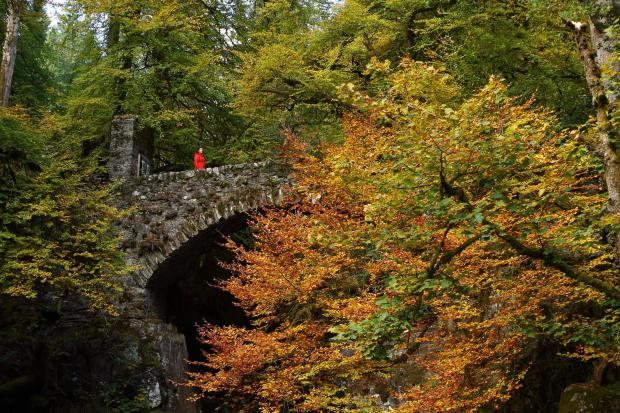 HeraldScotland: The Hermitage, near Dunkeld, Perthshire. Picture: Colin Mearns/The Herald