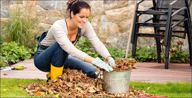 Garden @ Home - cover
