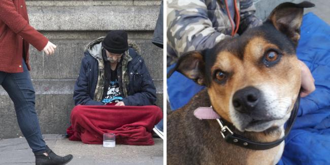 New initiative launched to save homeless dog owners from choosing between shelter and their pets