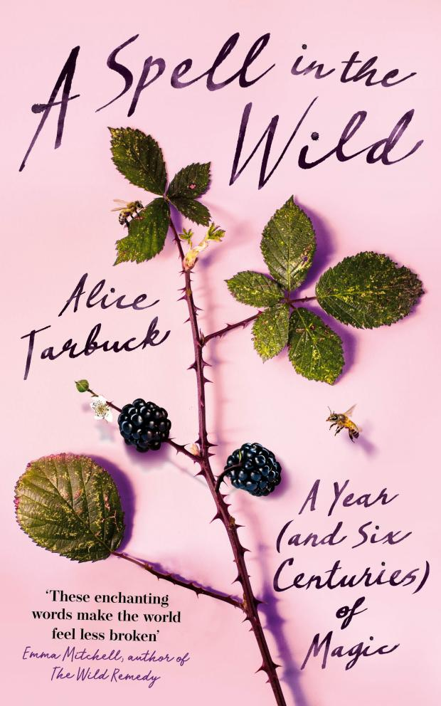HeraldScotland: A Spell In The Wild by Alice Tarbuck