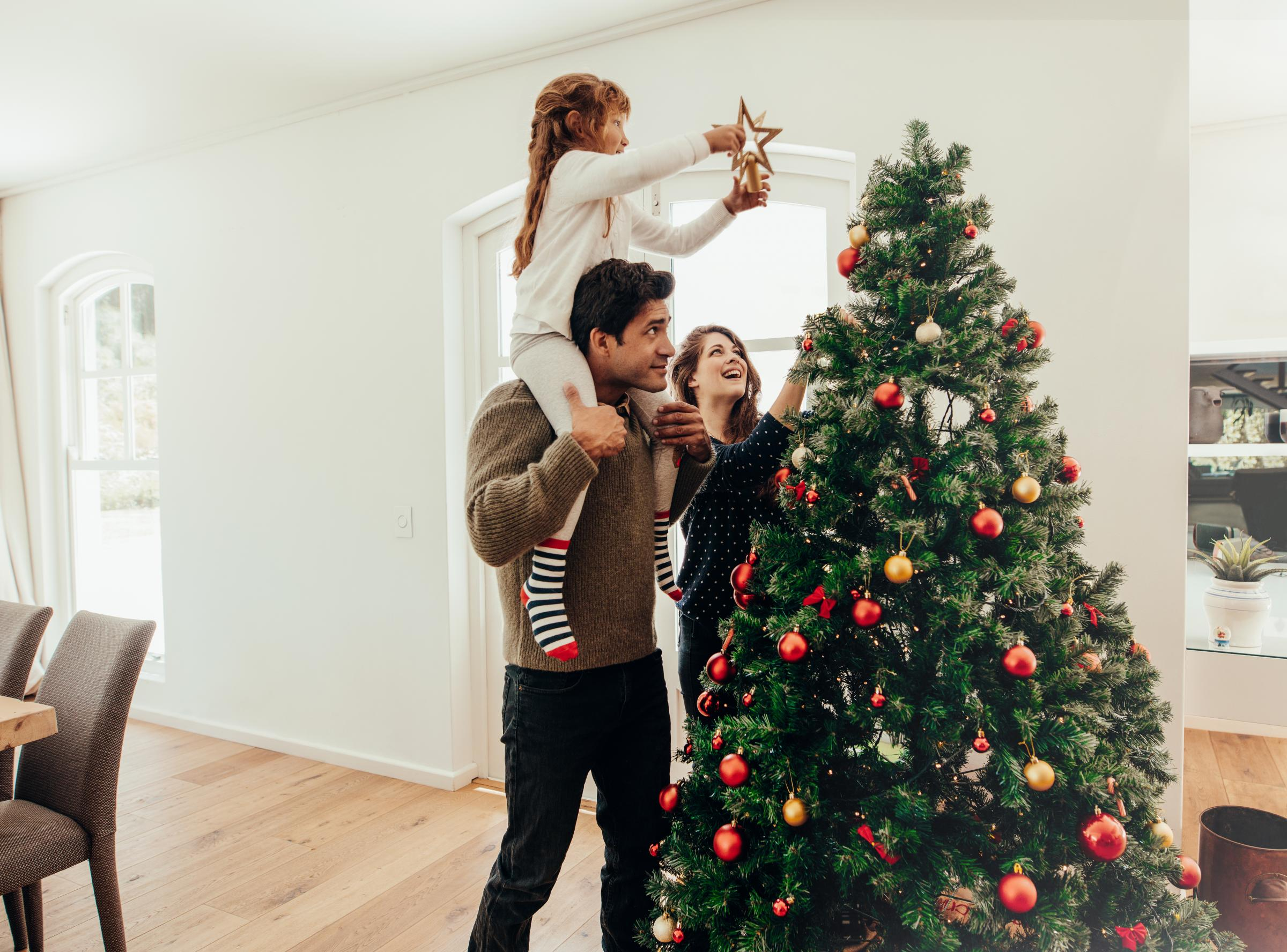 Photo of Susan Swarbrick's Week: I'm putting up my Christmas tree now
