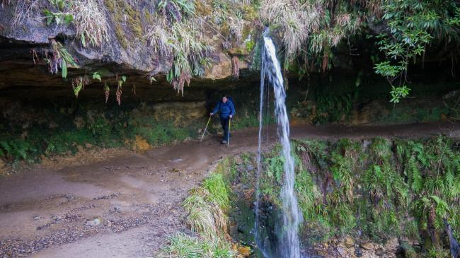 The path has little sets of waterfalls to keep your interest