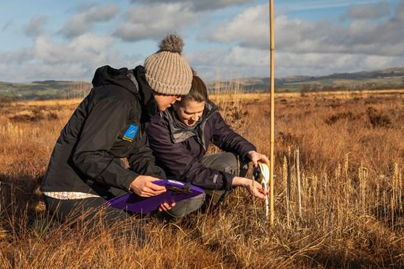 Peatland restoration could create many future jobs