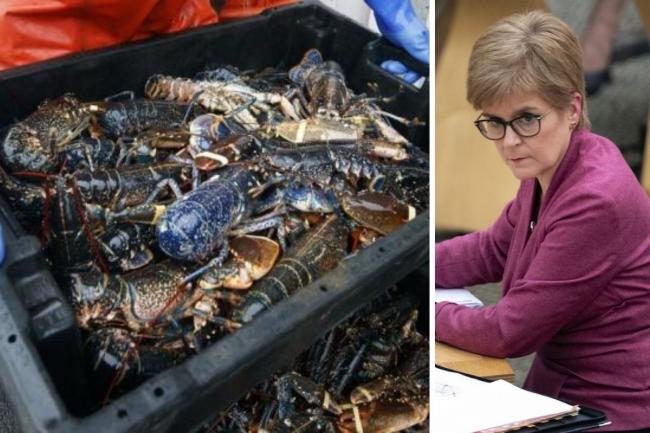 Watch: Nicola Sturgeon blasts UK Government for 'shameful' Brexit seafood 'mess'