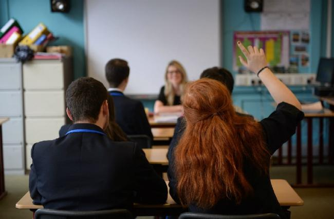 Scotland's school inspection is in need of major reform, according to the Greens.