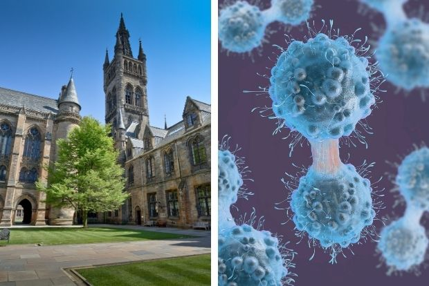 Glasgow scientists hail breakthrough cancer study findings