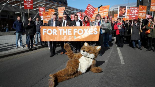 HeraldScotland: Hundreds joined the call for a fox hunting ban in Scotland in 2018