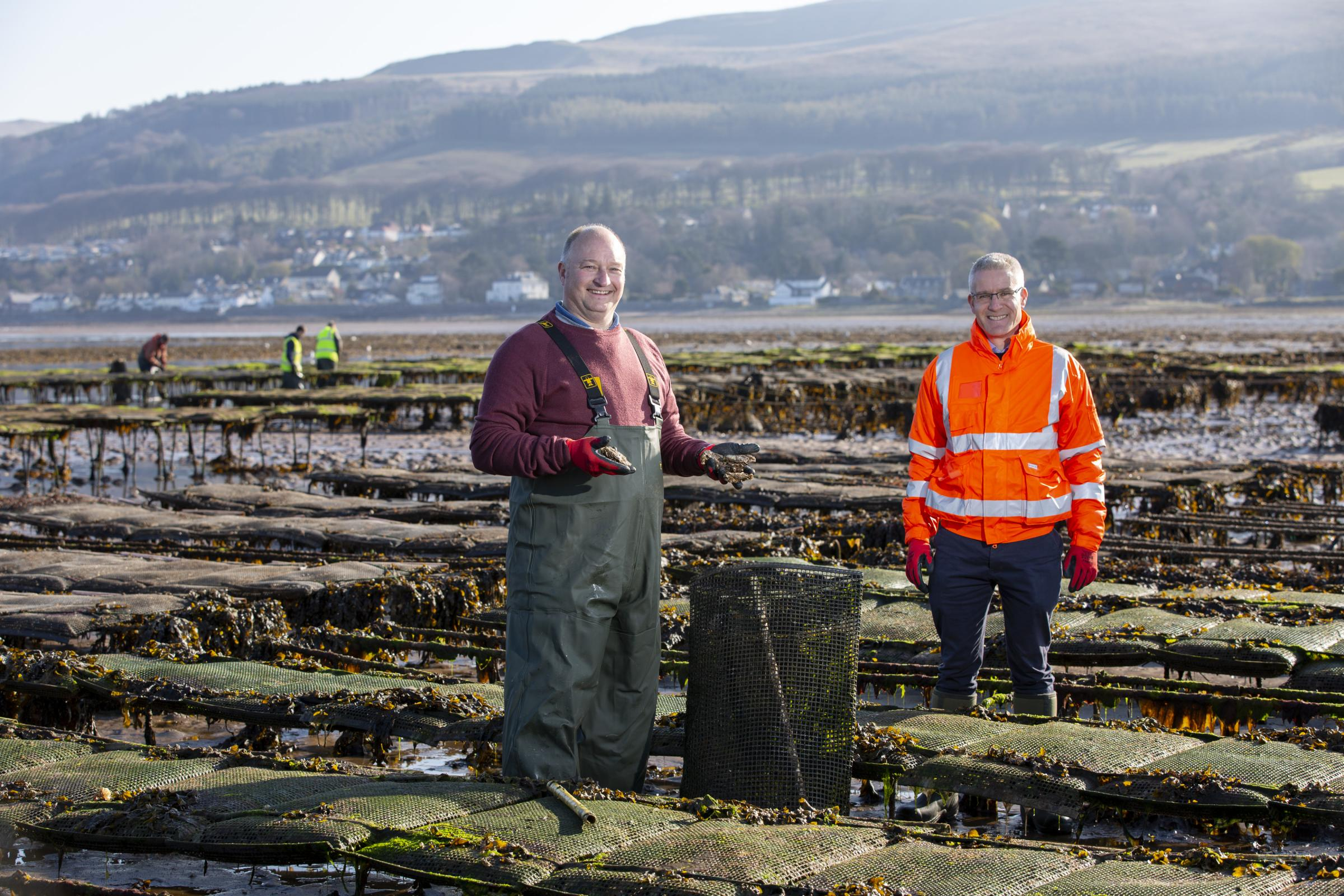 Oyster firm targeting Far East grows in cold, deep waters of Clyde