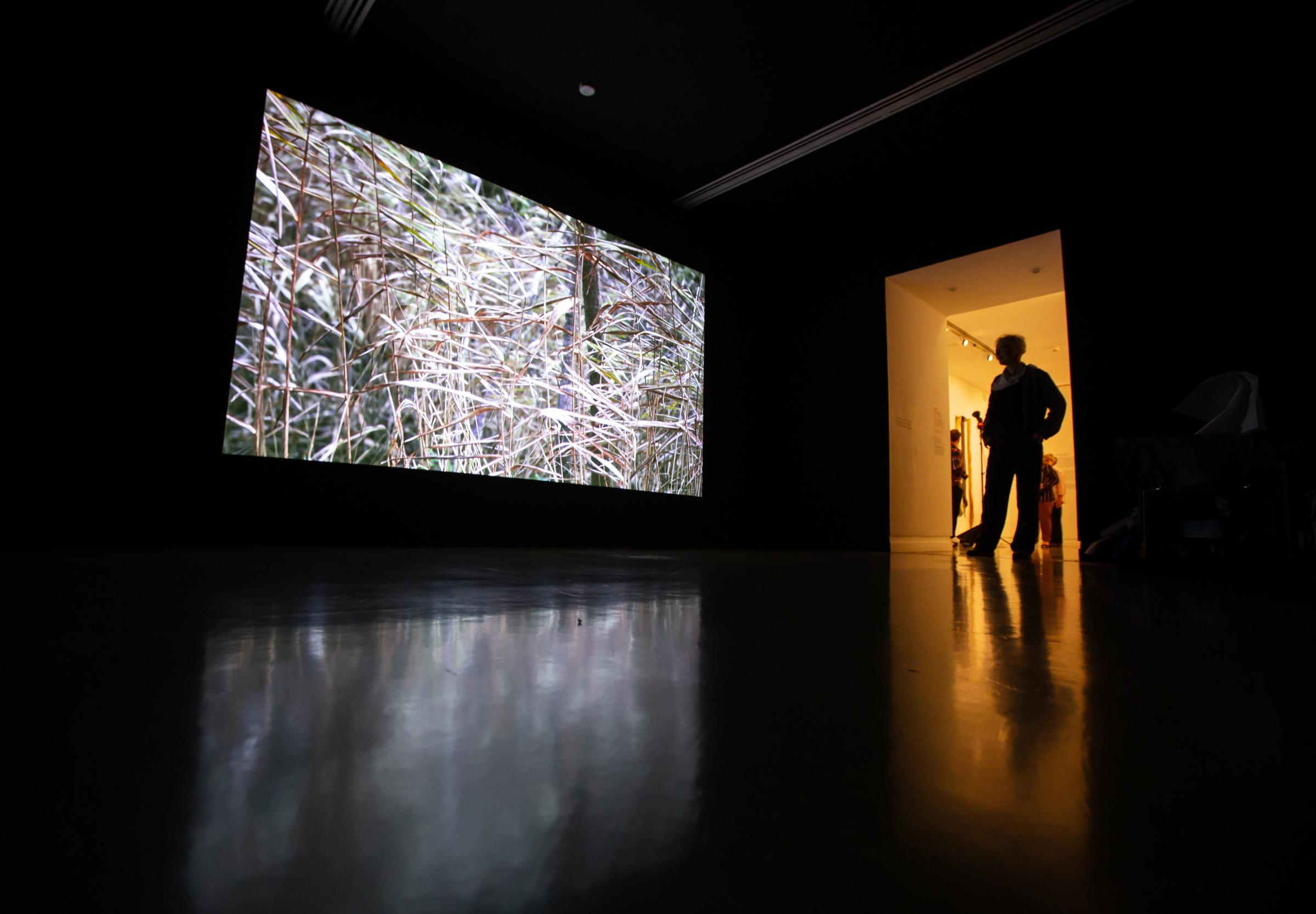 Artist Jo Ganter is profiled in the doorway of his video installation Urgent Nature.  The film is accompanied by music by David Rothenberg.  Photograph by Colin Mearns.