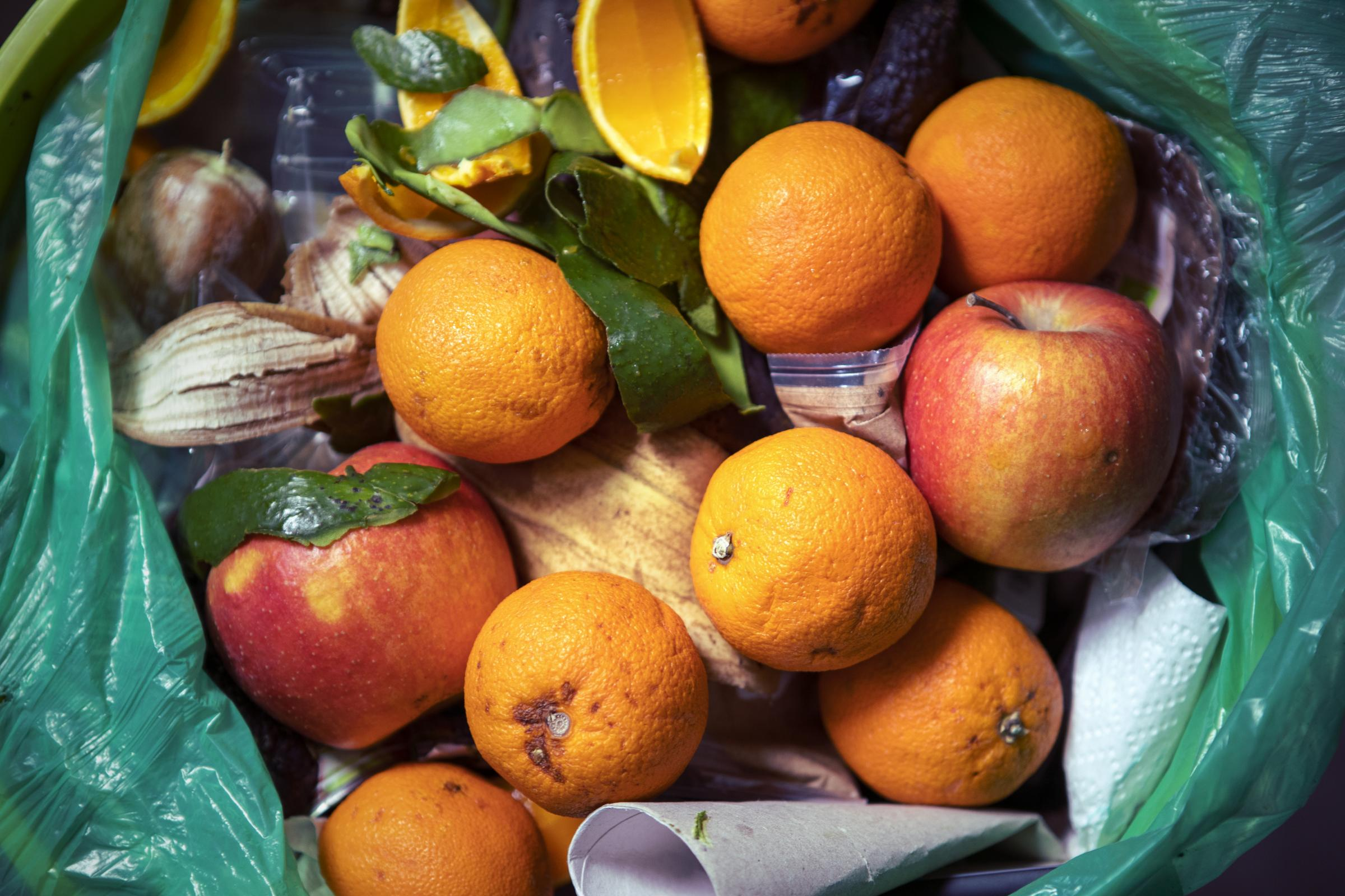 Plate up for Glasgow is aimed at sustainability and reducing food waste