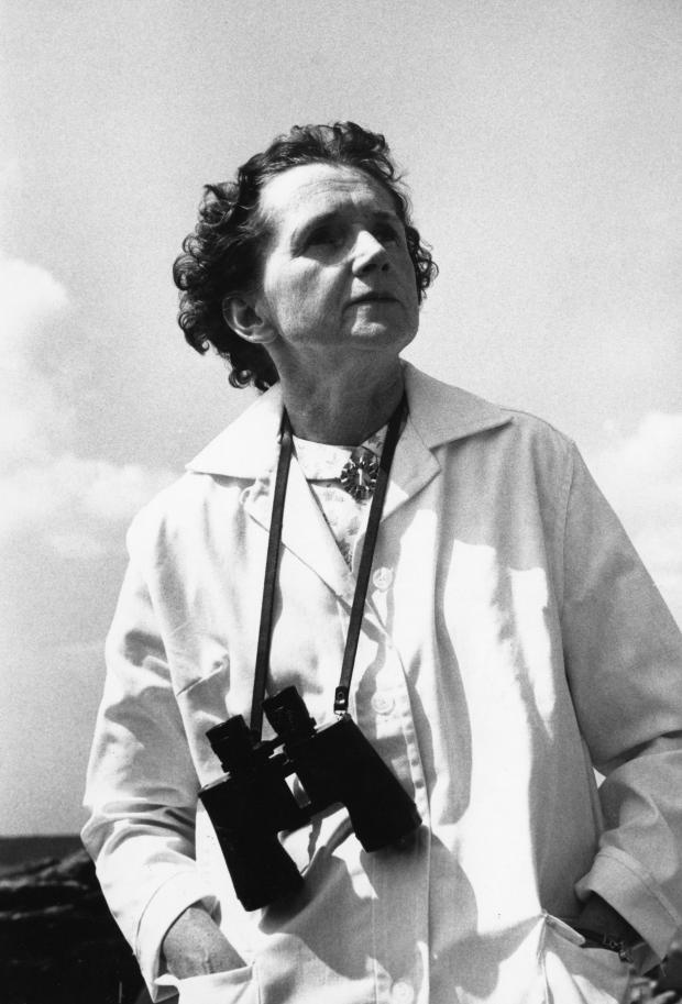 HeraldScotland: Rachel Carson in 1961. (Photo by JHU Sheridan Libraries/Gado/Getty Images)