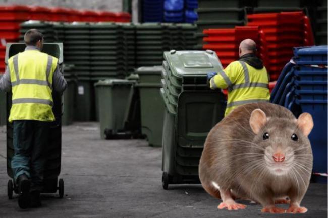 Serikat pekerja mengecam setelah Susan Aitken mengecilkan insiden tikus sebagai 'kontak kecil'