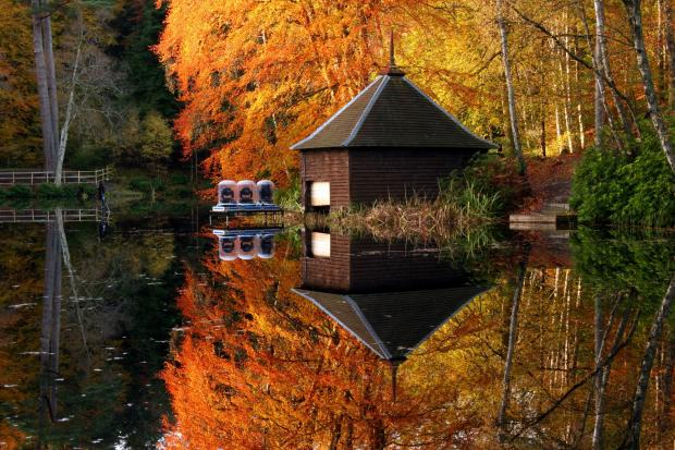 HeraldScotland: Autumn colours in Faskally Wood reflected in Loch Dunmore. (Photo by: Universal Images Group via Getty Images).
