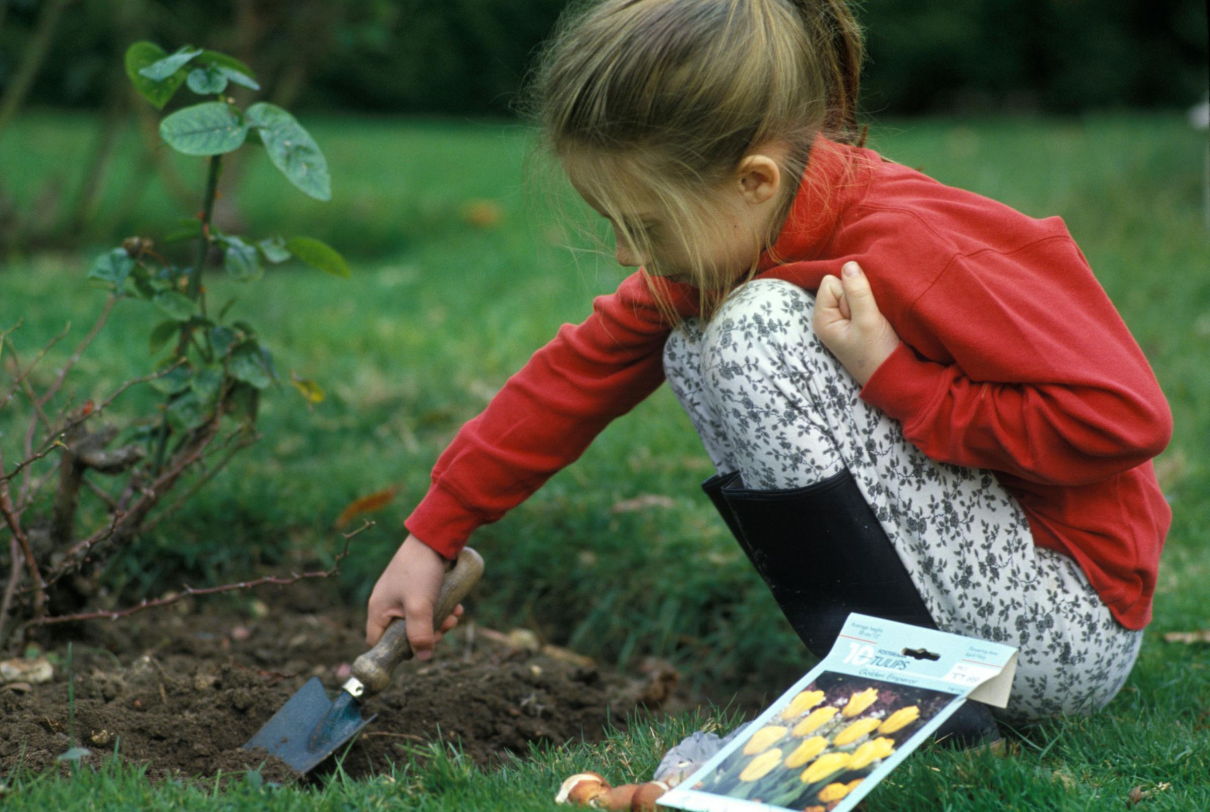 Berkebun: Lima kegiatan menyenangkan untuk mengajak anak-anak Anda keluar rumah dan berkebun di musim gugur ini