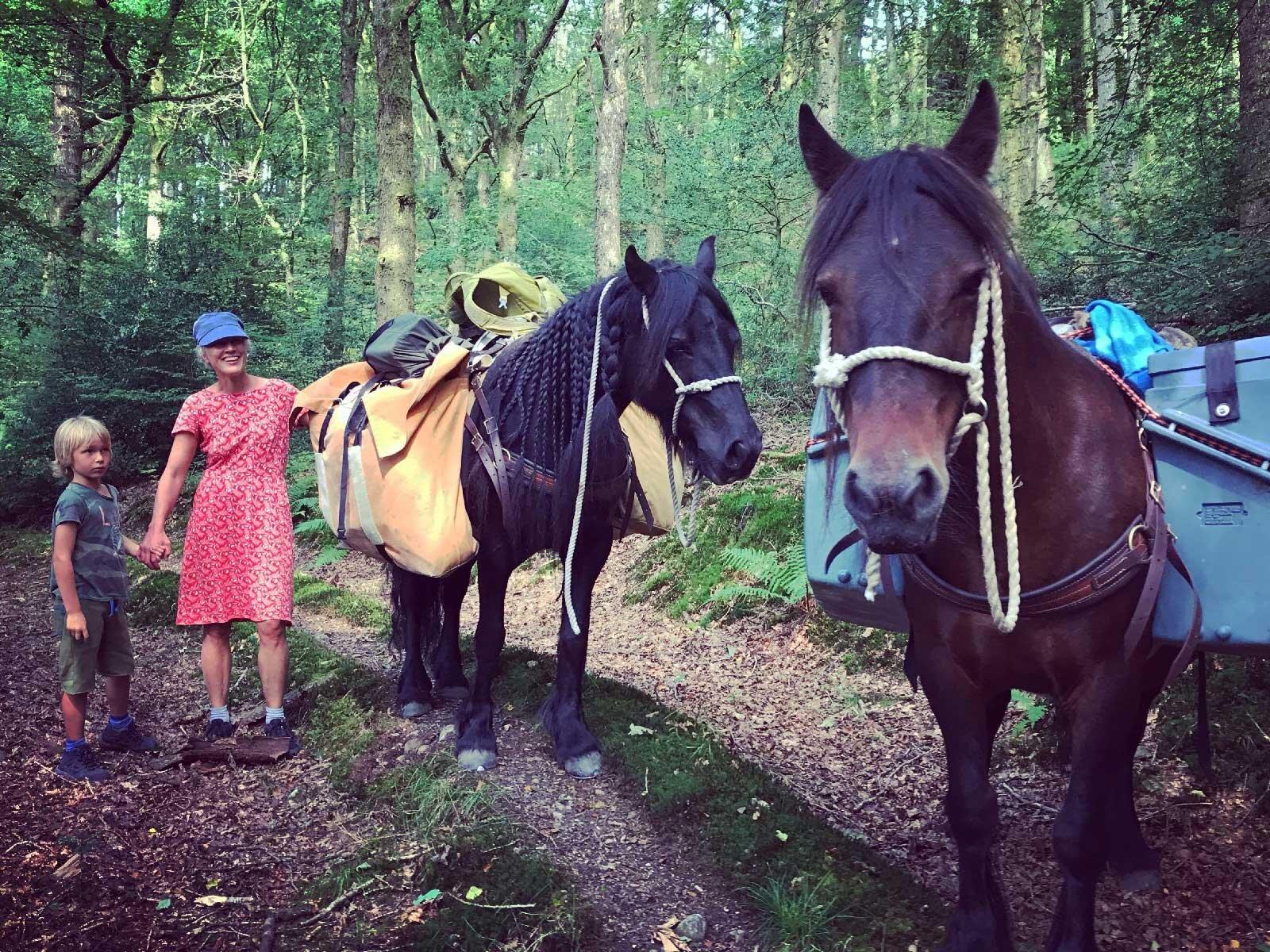 Fell Pony Adventures: Trekking melintasi lanskap paling indah di Inggris