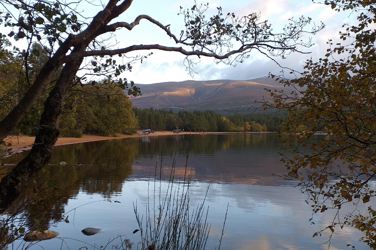 Pemantau langkah kaki tempat kecantikan Cairngorm untuk menghitung pengunjung