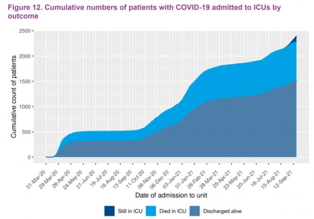HeraldScotland: Survival has improved as the demographics of Covid ICU patients became younger, and new treatment regimes were adopted (Source: SICSAG)