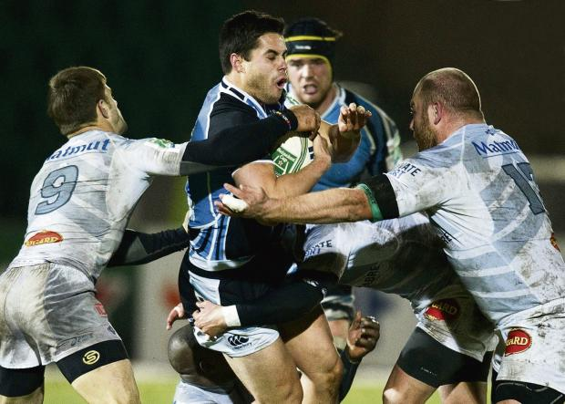 The pacy Glasgow wing Sean Maitland is in the Scotland squad. Picture: SNS