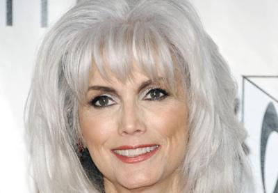 Emmylou Harris charged after LA hit-and-run accident