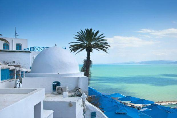 Writers, poets and artists have been drawn by the unhurried vibe of life in Sidi Bou Said. Photograph: Shutterstock
