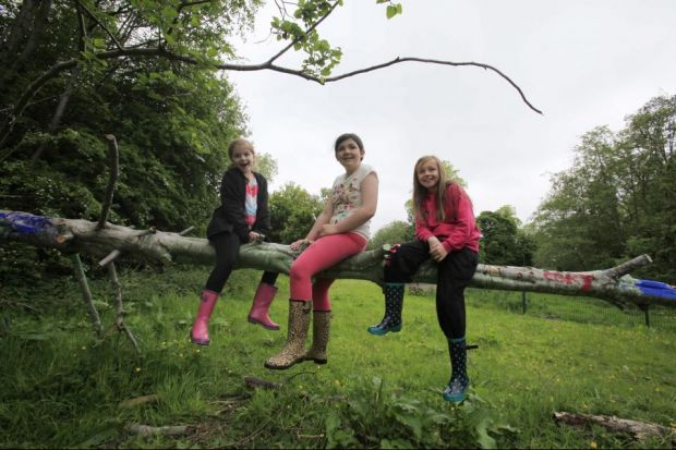 ROOTS: From left, Robyn Martin, Leah Wilson and Sophie Millar help to launch the Woodland Strategy in Castlemilk Woods. Picture: Mark Gibson