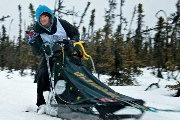 Scottish competitive dog sledder races 180 miles in temperatures of -40C