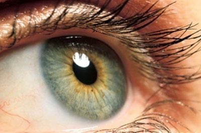 Gene therapy gives sight back to patients due to go blind