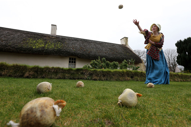 Burns fans to attempt to break haggis hurling world record