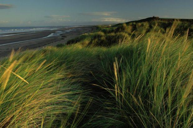 The fabulous beach is not Troon's only gemPhotograph:  Keith Fergus